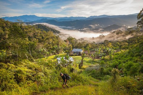 The Kokoda trail is set in a dramatic landscape in Southern Papua New Guinea where Australian soldiers fought alongside Papuans to liberate New Guinea during the second world war
