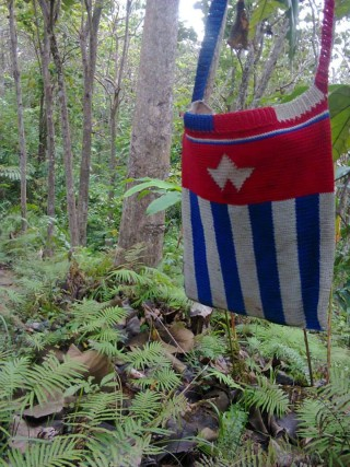 These traditional West Papuan yum/bilum bags are handmade in the West Papuan bush. Strong and durable, this comes in the design of the West Papuan flag.